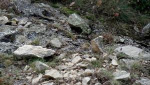 A sa source, l' Elbès s'écoule de la roche granitique fracturée.